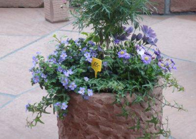 k-Blumentrog rund grob gespitzt
